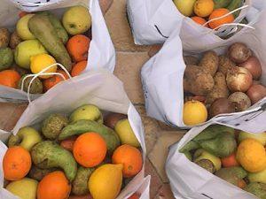 Fruit and Veggies for the Pollensa Food Bank