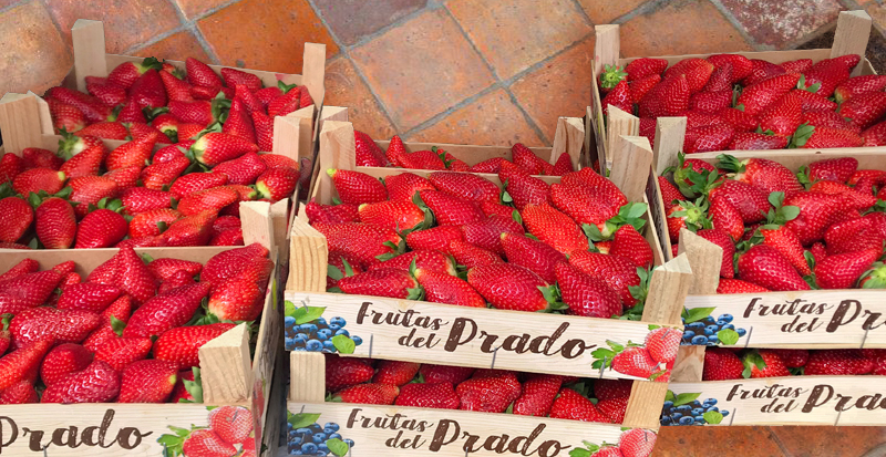Strawberries for the Pollensa Food Bank